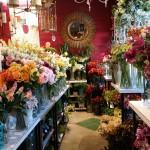 Floral_20151219_115115
